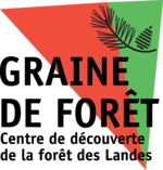 Association Graine de Forêt